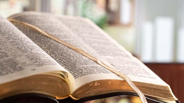 Best Online Bible Study Lessons, Courses & Classes