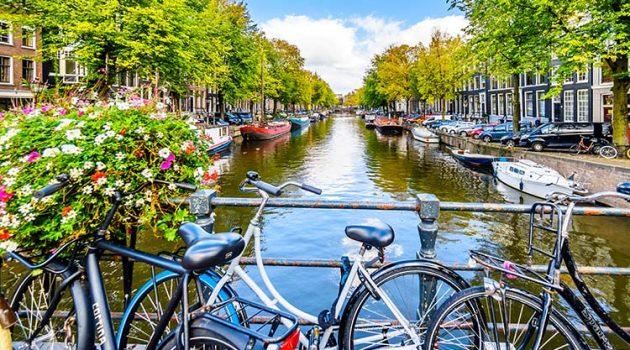 Best Online Dutch Language Courses & Lessons