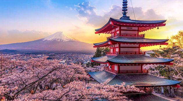 Best Online Japanese Language Courses & Lessons
